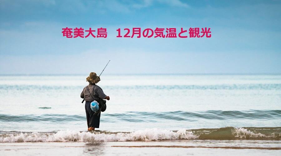 奄美大島の12月の気温と観光