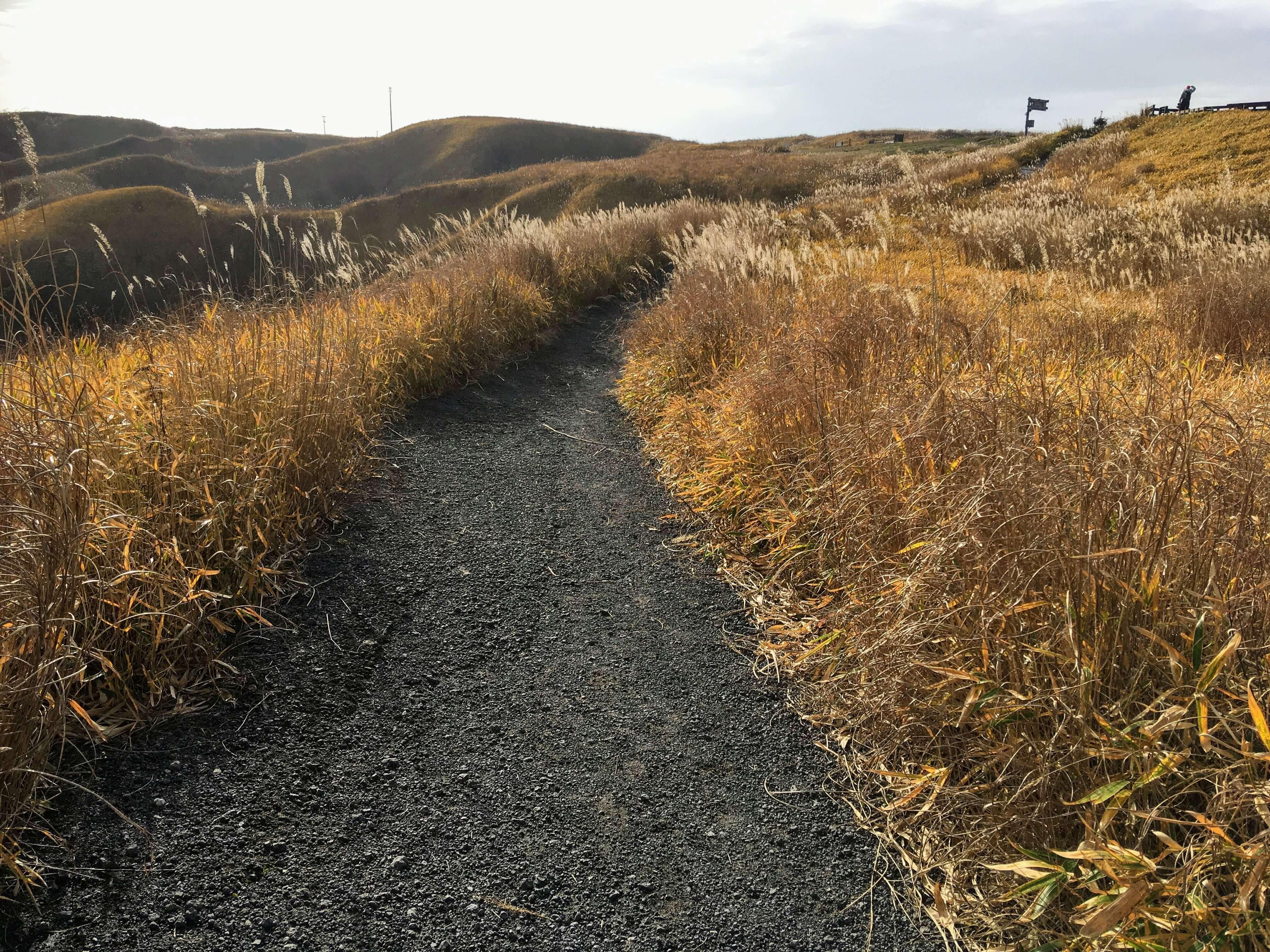 阿蘇山の小道