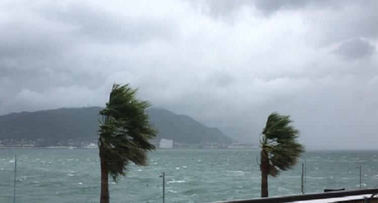奄美大島の冬の服装、風が強い日