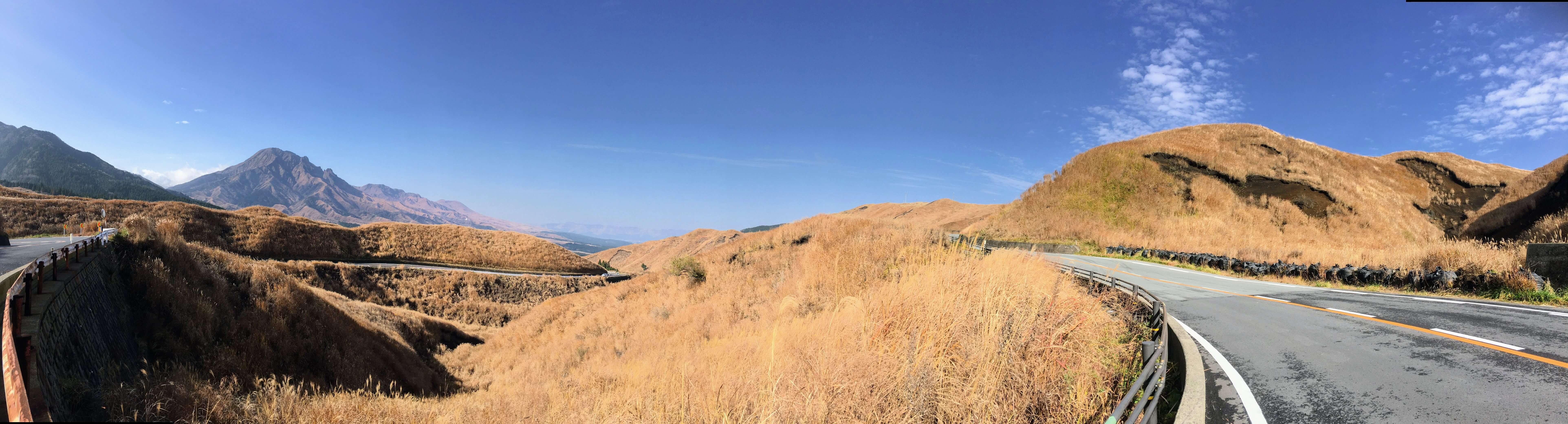 冬の阿蘇山。一面がススキに覆われて黄金色に染まっています