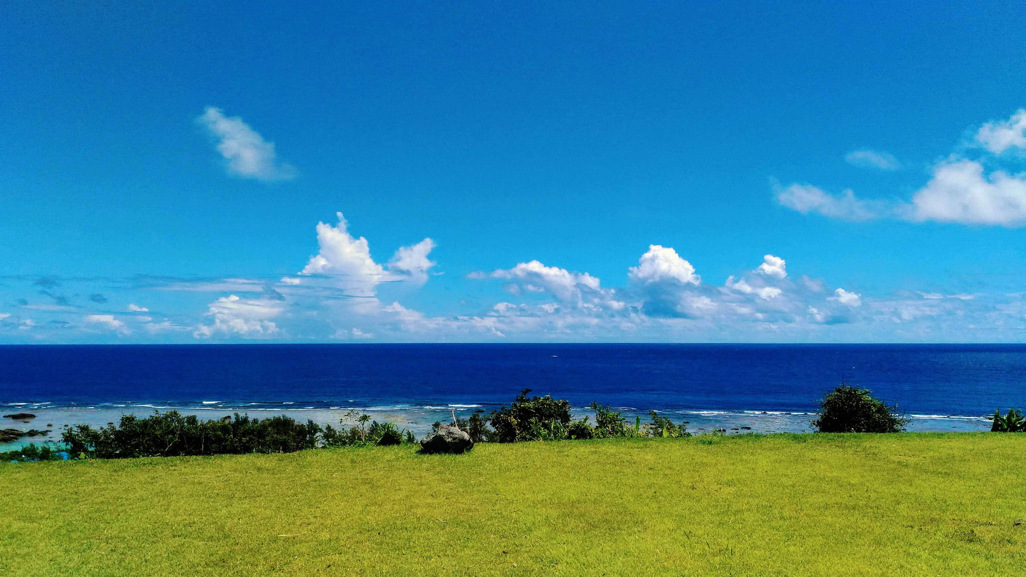 青い海と緑の芝生とのコントラストが最高!